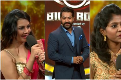 Bigg Boss Telugu: Madhu Priya gets eliminated from the house while host Jr NTR brings in Diksha Pant as wildcard entry