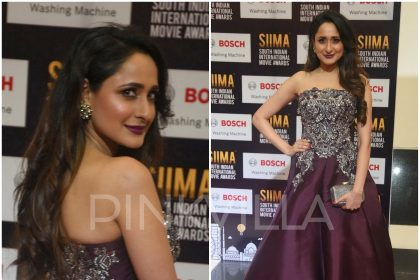 Pragya Jaiswal in Monisha Jaising at SIIMA 2017