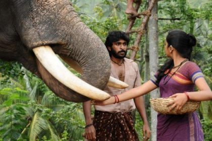 'Kumki 2' shoot begins in Thailand