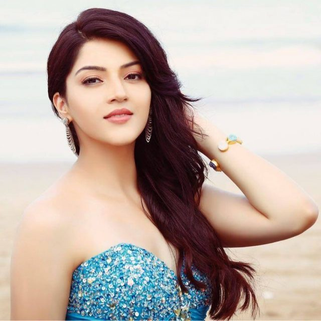 Had a great start to my career and I am thankful to the Telugu audiences who accepted me: Mehreen Pirzada