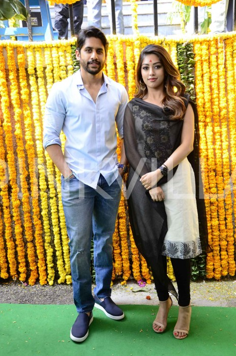 Photos: Director Maruthi's next film with Naga Chaitanya and Anu Emmanuel in lead roles gets launched