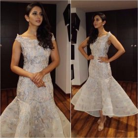 Yay or Nay: Rakulpreet in Shriya Som