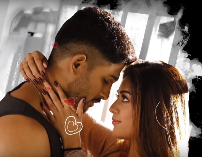 Second single LOVER ALSO FIGHTER ALSO from Allu Arjun's Naa Peru Surya is out now