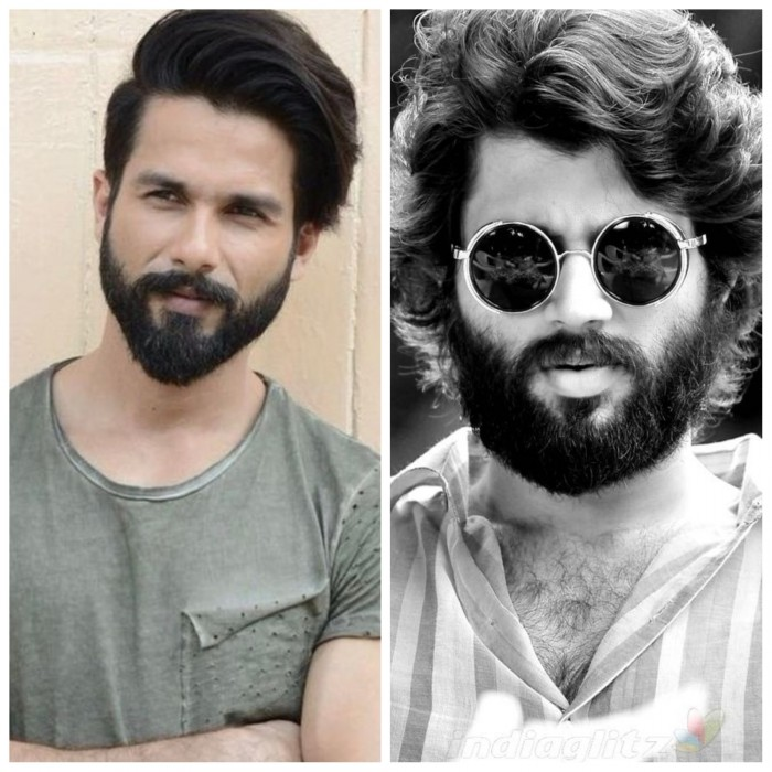 Rights for Arjun Reddy's Bollywood remake starring Shahid Kapoor sold at whopping amount?