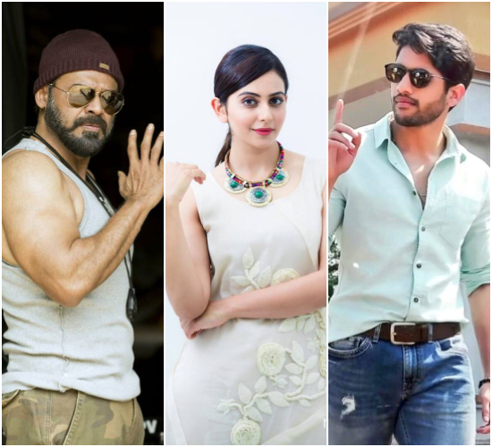 Rakul Preet signed on for Venkatesh and Naga Chaitanya multi-starrer? Here's what we know