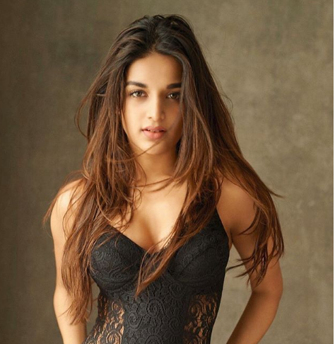 Nidhhi Agerwal to romance Akhil in her next!