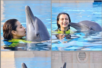 Trisha Krishnan shares a photo with a dolphin, gets TROLLED