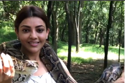 WATCH: Kajal Aggarwal is the true 'Queen'; her daredevil act involving a snake is unmissable